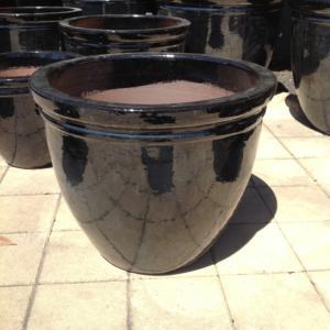 Belly Pot Shiny Black ST0927