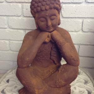 Buddha Reflect JF01