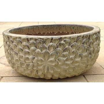 ST211559 Daisy Water Bowl Large Antique Creme